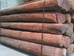 长期供应 大叶紫檀 木雕刻 手杖 常用料