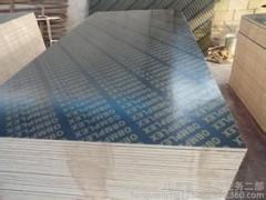 厂家直供 高品质防水建筑模板 优质覆膜板 工地优先选择