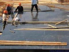 建筑模板厂家 建筑覆膜板 建筑模板 建筑模板批发 大量供应