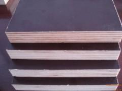 专业供应 清水模板 规格齐全 品质保障