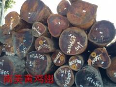 精品南美黄鸡翅木 蛇歪漆木 碳化木 甘蓝豆 大理石豆