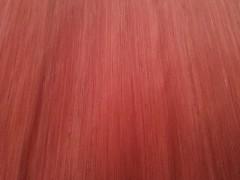 厂家直销 4*8尺白木 沙比利 克隆木 科技门板大量批发