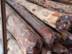 精品供应 印度小叶紫檀木 手串佛珠 工艺品 家具 首选用料