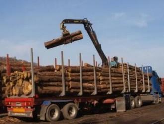 全国运输限吨后,各地木材运费怎么计费?