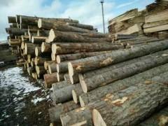 加工定制实木板材 樟子松 樟子松原木 实木板材 大量供应