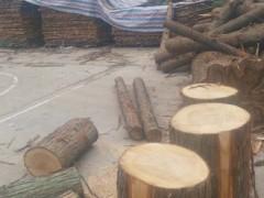 精品 池杉(落叶松) 水杉木制品 各种木制品均可定做