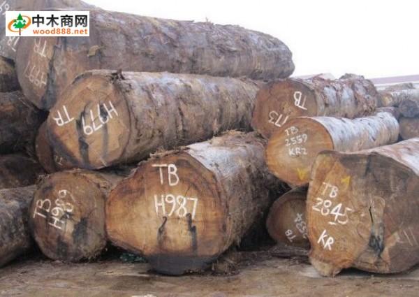 张家港木材市场价格普遍上涨