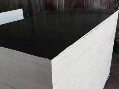 河北廊坊厂家批发(建筑模板)价格最低,质量优
