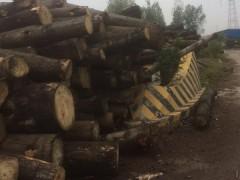 陕西杂木加工厂,最新杂木价格表,杂木供应商鲁鑫木业
