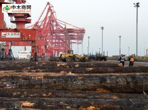 木材进口码头泊位由最初的2个增至12个