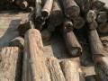 美国CK森林木业有限公司-产品图片