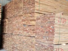 石家庄乐天木业辐射松实木烘干板大量批发