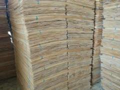 厂家直销 桉木单板长期大量供应
