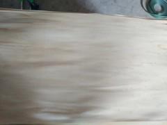 专业生产杨木木业,各种规格大量有货