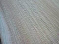 枫木板一手货源