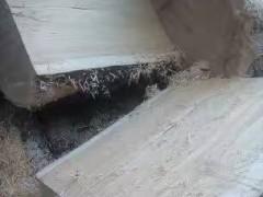 可定制加工生产枫木板材