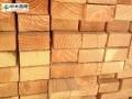 美国针叶材联盟递交请愿书抵制加拿大木材的不公平竞争