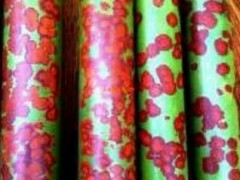 可定制批发各种规格湘妃竹,竿箨黄褐色,有黑褐色斑点,漂亮美观