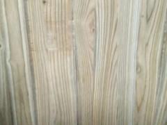 山东曹县默达木业专业生产梓木拼板,梓木直拼板,货源稳定