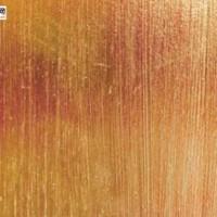 进口木材名称国标:漆木