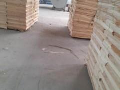 临沂杨木木皮杨木单板杨木家具板厂家联系方式明进木业联系方式