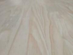 山东洪凯实木集成材专业生樟子松实木指接板辐射松实木指接板