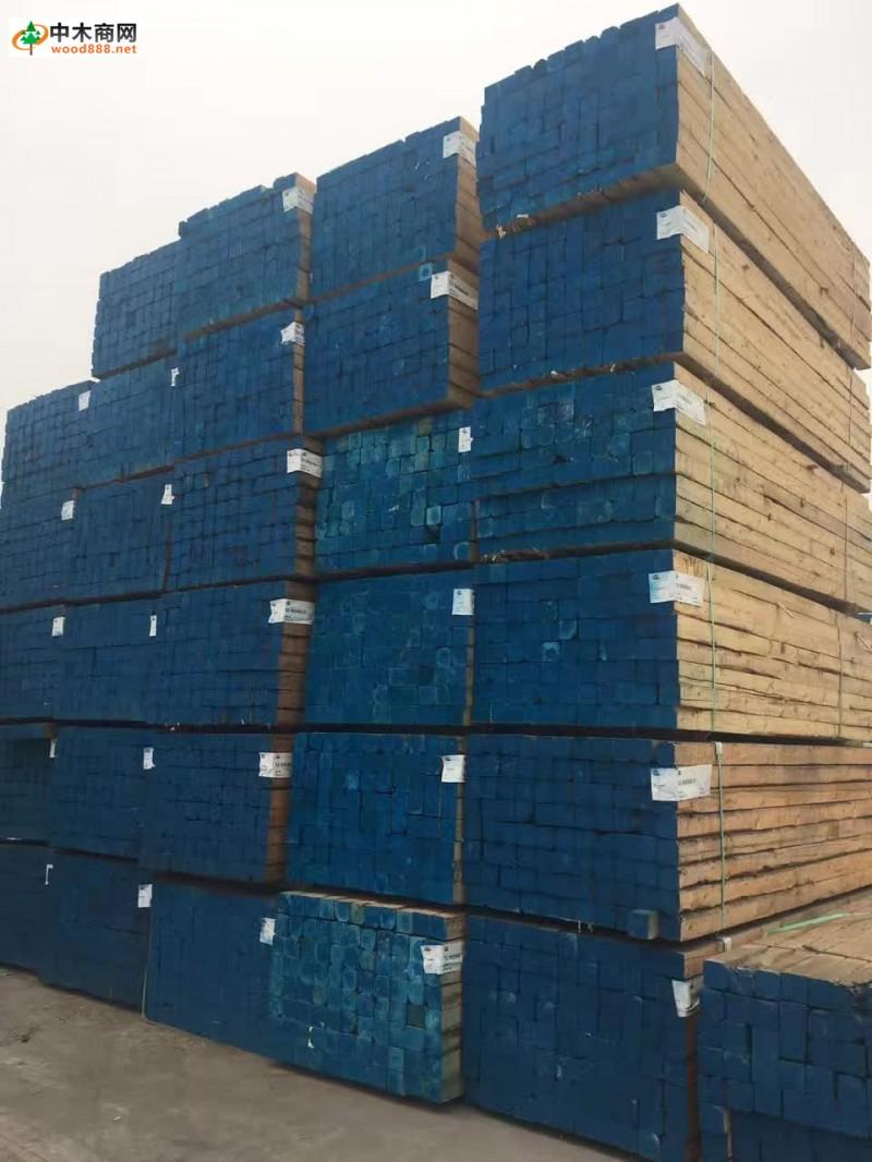 张家港木材市场松木价格及图片