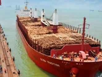 东莞麻涌口岸迎来首批原木进口