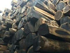 江苏精品沉贵宝原木500吨出售认准张家港市亿林森木业有限公司