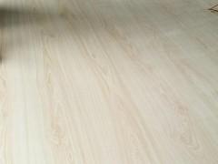 激光刀模板刀模手工板最新行情走势临沂安子林木业最新报价