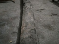 出售:阴沉木,长度:3米,直径:25-30