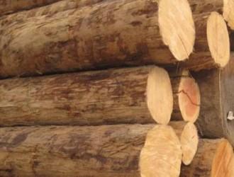 辉煌精品松木有限公司--产品图片