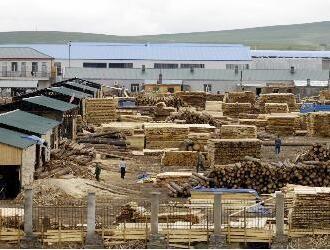 满洲里口岸木材市场将发生阶段性变化