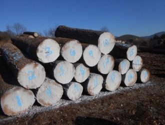 美国CK森林木业有限公司(马拉)--产品图片