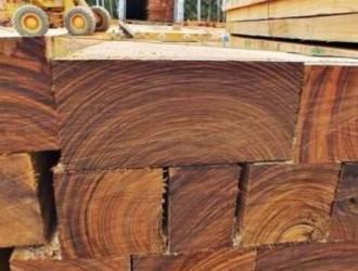 张家港口岸2016年度板材进口量再创新高