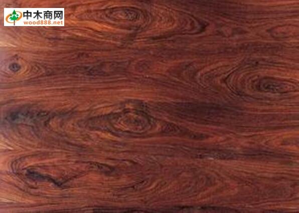 缅甸木材树种详解:紫檀木padauk