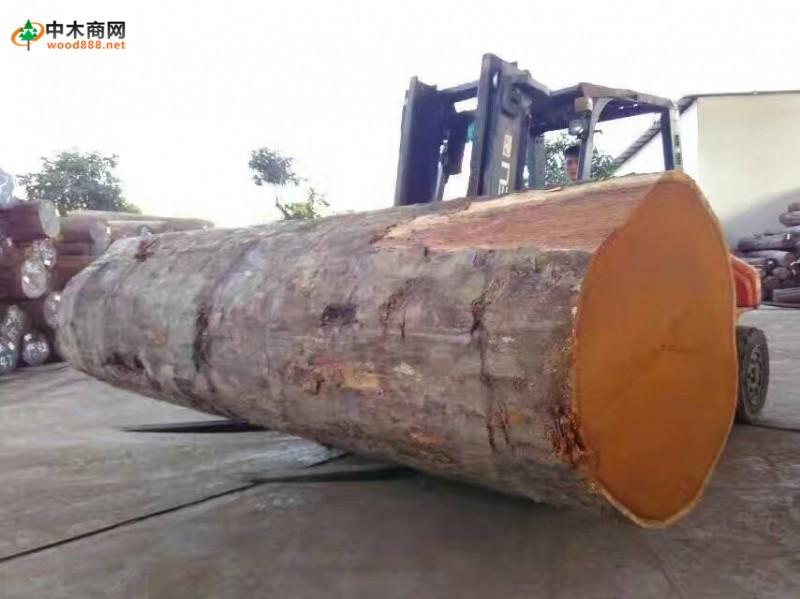 佛山市顺德区三兄木业有限公司(是珠江三角洲范围内起步较早的原材料销售与加工经营商,集木材贸易和木材加工一体化。有着多年的加工技艺,深受同行的认同。主要经营多种的进口木材和国内木种,特别是销售东南亚(印尼)、南美、缅甸、非洲等木材。  我公司供应的木材,直接原产地取得,有着价格与质量的保证。欢迎广大客户前来直接订购选料。另因应客户的不同需要我公司也有大量价格低廉木材可选购。同时对客户订介规格料,也有着多年经验,客户可因应自身用料规格进行订介。公司始终坚信诚信共生,互利互赢的发展理念,以真诚服务紧贴市场脉搏