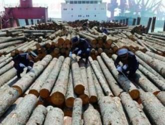 福州口岸2016年度进口木材首超3万立方