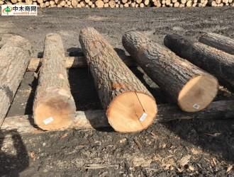 上海吾行木业--产品图片