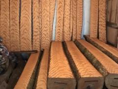 福建东升木业专业销售四川金丝楠木,一手货源,质优价廉