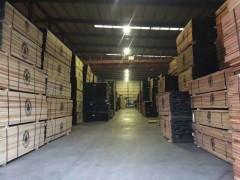经销批发进口北美木材红橡木,白橡木