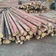 黑龙江省绥芬河市专业经销进口俄罗斯落叶松木材