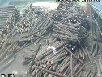 重庆市梁平区张德富木材加工厂--产品图片