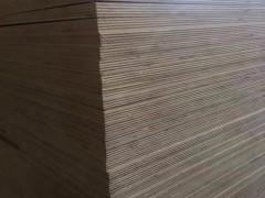 专业生产杨桉多层三胺基材,环保胶,质量过硬