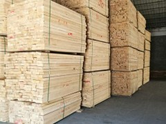 中山市烘干桦木板材厂家联系方式