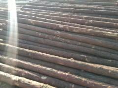 出售各种规格檩条小杆、打桩杆、大头杆