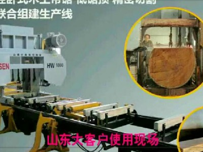 目前自动化程度最高的大型木工数控卧式带锯在山东投入批量生产! (527播放)