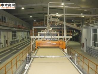太和东盾木业生产线改造升级提升刨花板生产效率