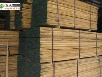 美国黑胡桃木市场开发与出口分布