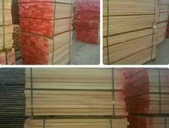 国内市场欧洲榉木价格顺势上涨50—100元/